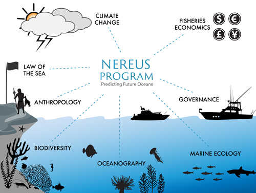 Nereus-Research-Areas-copy