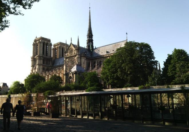 Notre-Dame de Paris. Credit: Mathieu Colléter