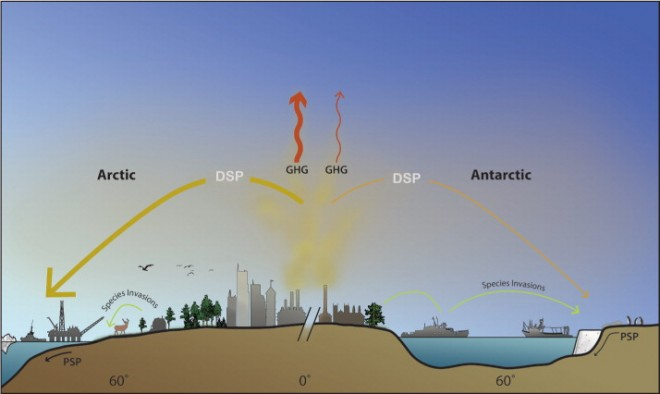Figure 1. Shared threats to polar environments. Greenhouse gases (GHGs, red arrows) are the major causes of climate change, the principal threat to polar environments. Climate change interacts with other threats, including diffuse-source pollutants (DSPs) such as persistent organic pollutants and ozone-depleting chemicals that migrate from lower latitudes. It also raises the risk of more localized point-source pollutants (PSPs), as well as fisheries overexploitation (represented by fishing boats) and species invasions (green arrows).