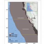 ダニエル・ダンのロックフィッシュの混獲の時空パター ンに関する論文が Canadian Journal of Fisheries and Aquatic Sciencesに掲載