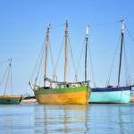 専門家に聞く:COP21と海、漁業、社会(国連気候変動枠組条約第21回締約国会議)