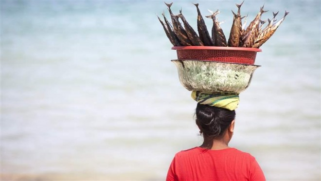 Fish-basket-on-head