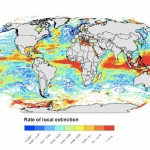 ネレウスプログラムにおける気候変動による影響の予測モデルの不確実性に関する研究