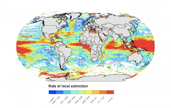 A computer model is used to show projections of how fish species may move towards the poles and into deeper waters in a high CO2 emissions scenario.  Source: Jones and Cheung 2015.