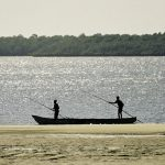 Fish catch declines may cause micronutrient deficiencies in developing nations