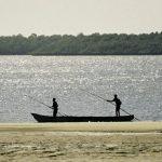 漁獲量の減少により、開発途上国で微量栄養素欠乏が引き起こされる恐れ