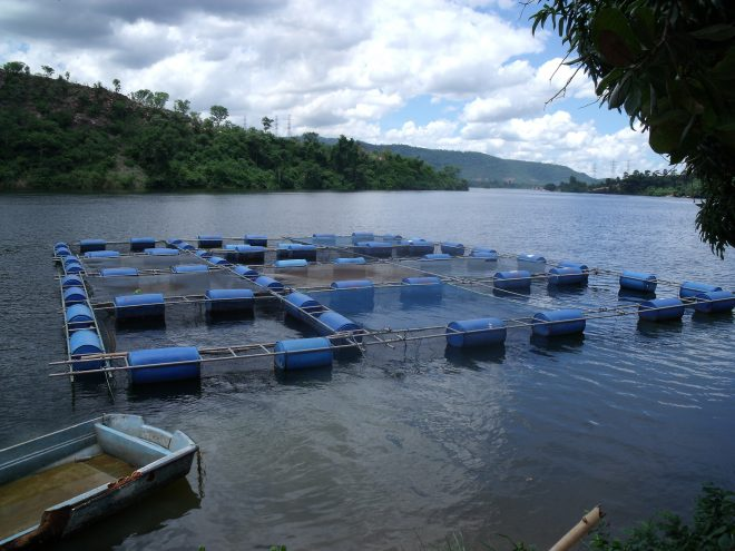 "Image: ""Cage aquaculture in Ghana. Photo by Curtis Lind, 2009"" by WorldFish, CC BY-NC-ND 2.0."
