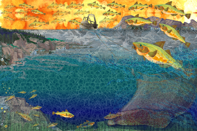Jenn Glaser Final Ocean Recovery illustration.