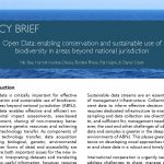 POLICY BRIEF: Open Data: enabling conservation and sustainable use of biodiversity in areas beyond national jurisdiction