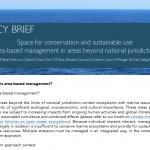 POLICY BRIEF: Space for conservation and sustainable use: area-based management in areas beyond national jurisdiction