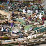 西アフリカの漁業、気候変動、養殖:世界銀行と西アフリカ地域漁業委員会ワークショップ