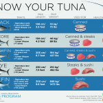 Skipjack or yellowfin? Stock status and ecosystem effects of tuna fisheries