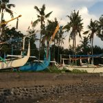 Mangroves, fisheries, and community livelihoods: Conducting fieldwork in Indonesia