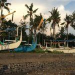 マングローブ、漁業、コミュニティーの暮らし:インドネシアでのフィールドワークについて