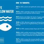 国連海洋会議と持続可能開発目標:パートナーシップは将来への道を開けるか