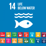REPORT – Oceans and Sustainable Development Goals: Co-Benefits, Climate Change and Social Equity