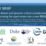 POLICY BRIEF: Deep, distant and dynamic: critical considerations for incorporating the open-ocean into a new BBNJ treaty