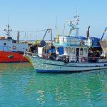 Global Fishing Watchがサイエンス誌で発表