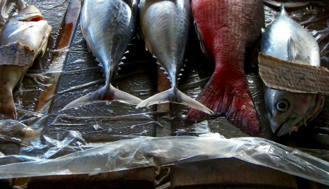 """Image: """"fish market wide crop"""" by Jim, CC BY-NC-ND 2.0."""