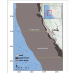 Daniel Dunn published on spatiotemporal patterns of rockfish bycatch in the Canadian Journal of Fisheries and Aquatic Sciences