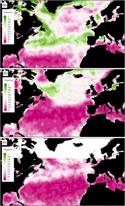 Figure 2. North Atlantic bloom frequency.  Spring (a), summer (b), and fall (c) bloom frequencies defined as the ratio of years with blooms divided by the total number of years over the period 1998–2014.