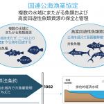 海域をまたぐ魚類および高度回遊性魚類資源の管理:ネレウス、国連公海漁業協定査定にてサイドイベントを開催