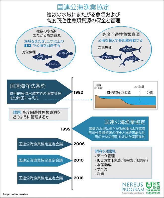 UN Fish Stocks Agreement JAPANESE-01