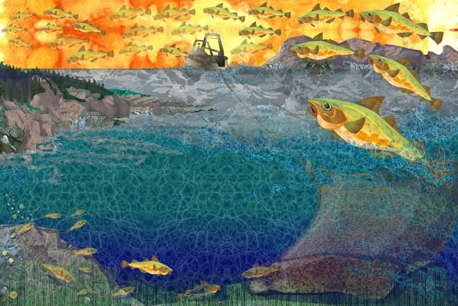 Jenn Glaser Final Ocean Recovery illustration.