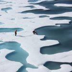 Sources of uncertainties in 21st century projections of potential ocean ecosystem stressors