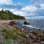 A case study for conservation: Wilderness protection in Estonia
