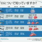 カツオかキハダか?マグロ漁業の資源状況と生態系への影響