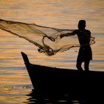 小規模漁業:漁獲と文化への貢献度を測る