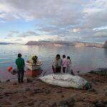 イヌイットの食糧安全保障を脅かすロケットの残骸