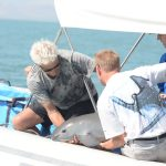 Vaquita captured! What are their chances for survival?