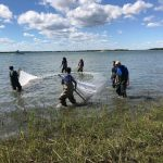 Now open for research: The East Carolina University (ECU) Fisheries Oceanography Lab / The Asch Lab